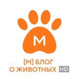 [M] Блог о животных HD